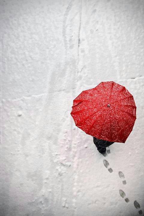 Battito nella neve