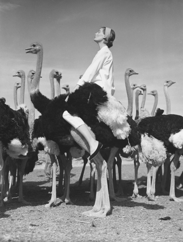 Wenda Parkinson, South Africa, Vogue 1956, by Norman Parkinson