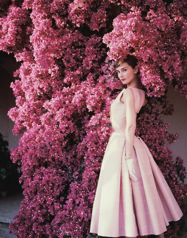 Audrey Hepburn and bougainvillea, Italy, 1955