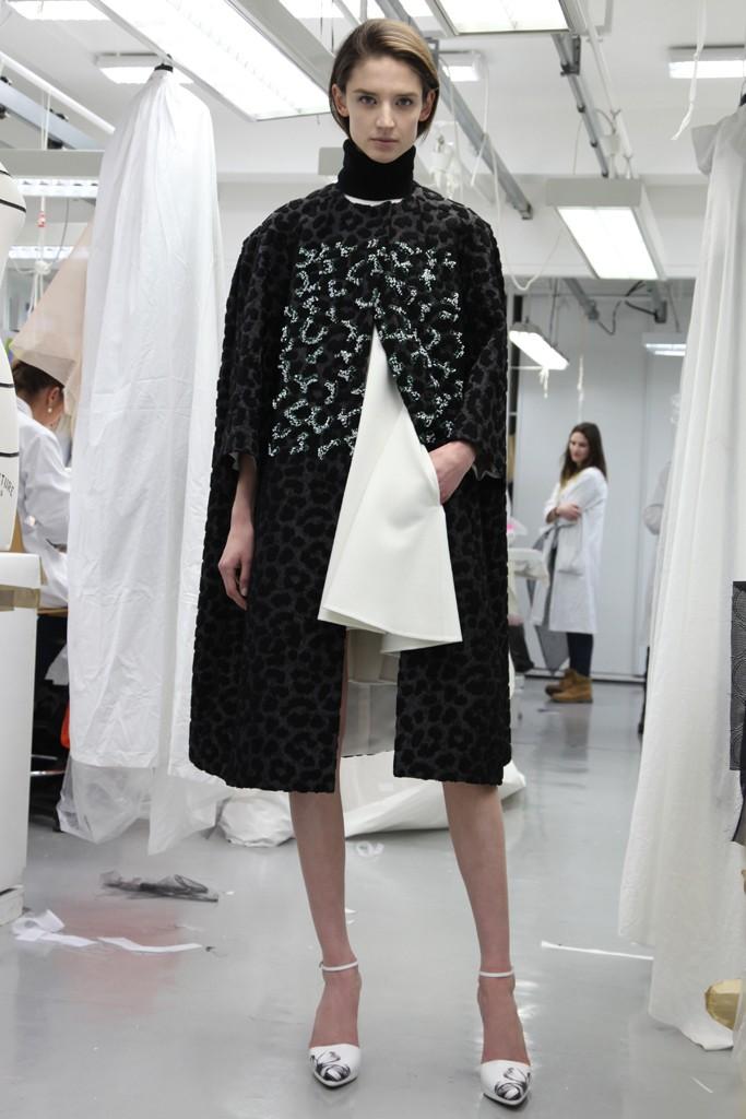 Dior, Pre-Fall 2014